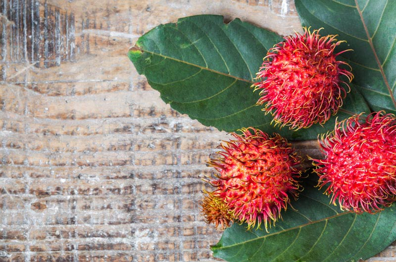 Food Wiki : What is Rambutan?