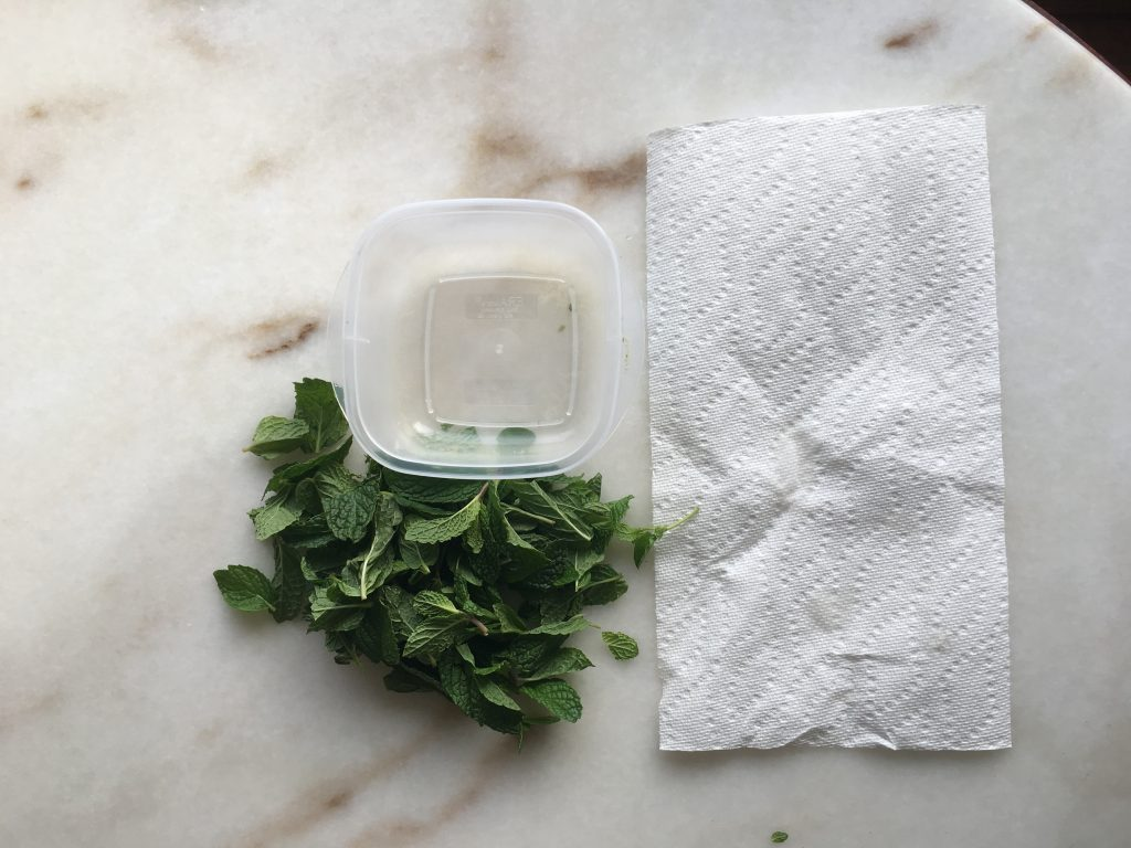 mint leaves with paper towel and container