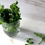 How To Store Mint With These 2 Easy Methods