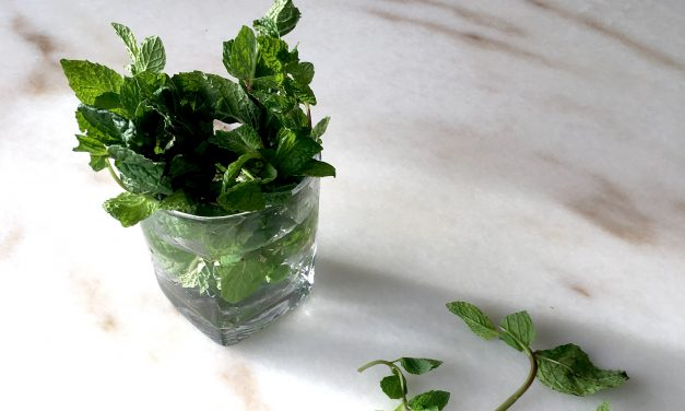 How To Store Herbs With These 2 Easy Methods