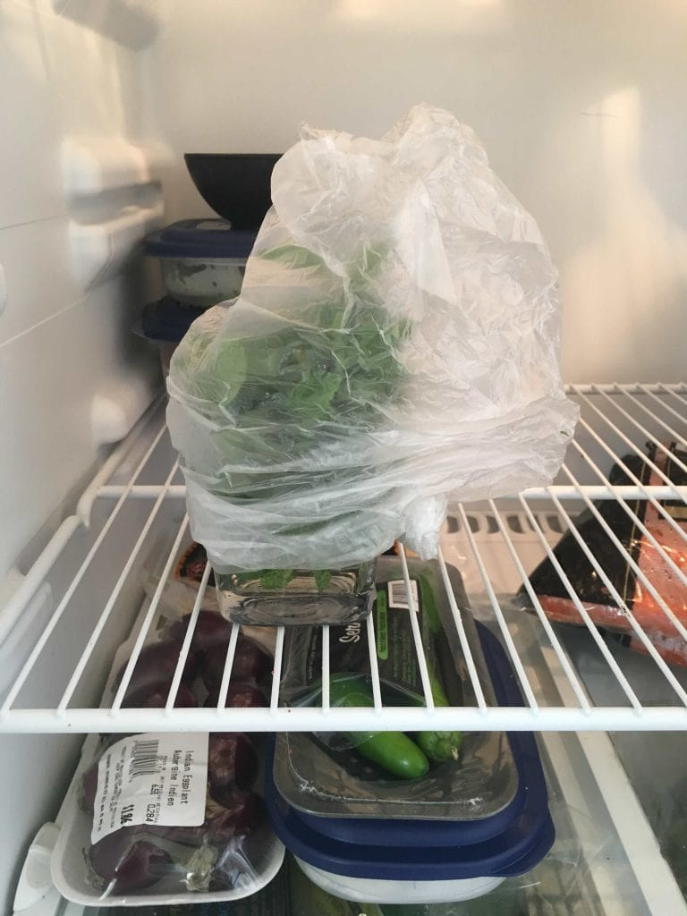herbs wrapped in plastic and stored in fridge
